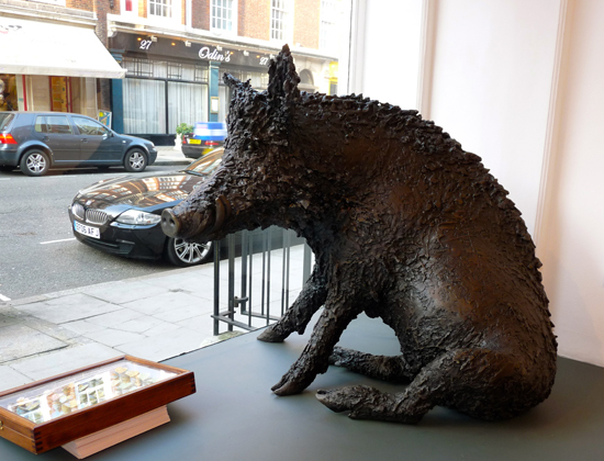 Dido Crosby, bronze life size Wild Boar in the window at Jagged Art Gallery, 2009